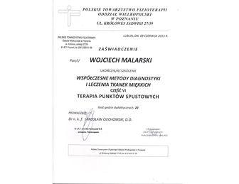 certyfikat terapia punktow spustowych