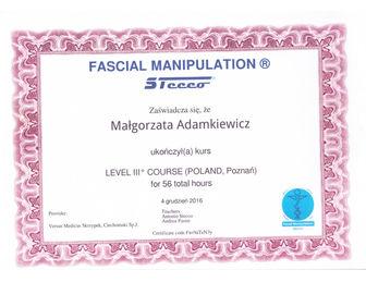 certyfikat malgorzata adamkiewicz FMID 2016